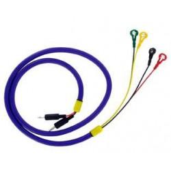 PES UMBILICAL Cord