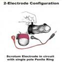 Scrotum Electrode
